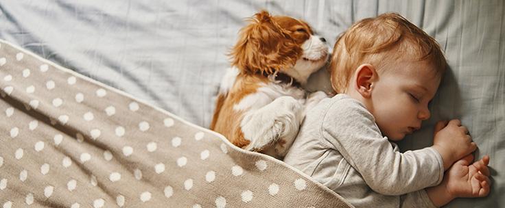 Baby ligt in bed met hondje